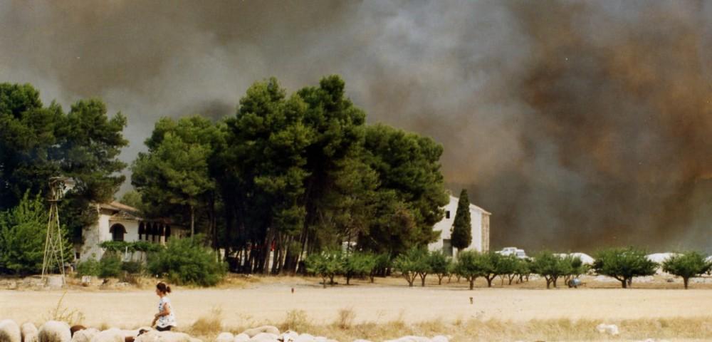 <div class='banner_marca'></div><div class='banner_title'>Aquel terrible verano del 94</div><div class='banner_content'>Un artículo de Javier Llopis sobre el gran incendio de Mariola, del que se cumplen 25 años</div>