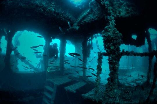 TVE emite imágenes grabadas por un submarinista alcoyano
