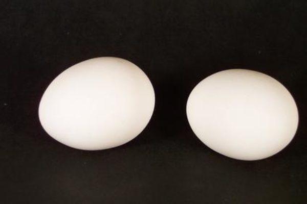 Amb un parell d'ous!