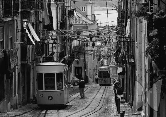 Saials. Lisboa