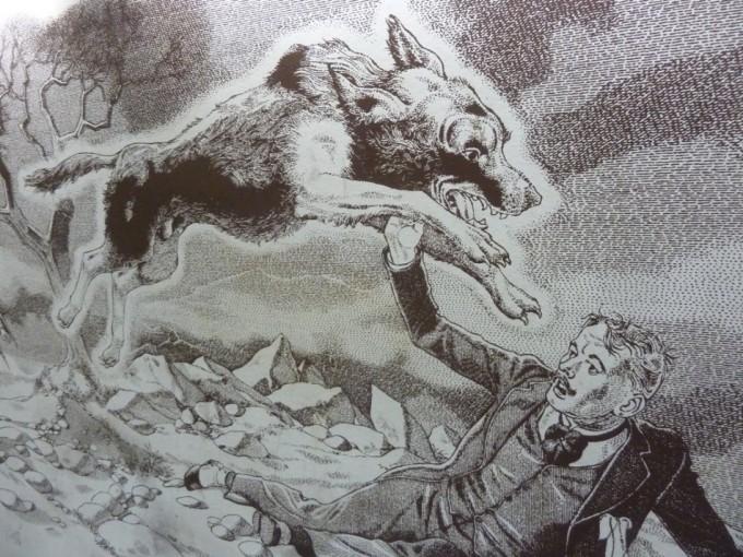 Cuaderno de campaña: Muerto el perro se acabó la rabia