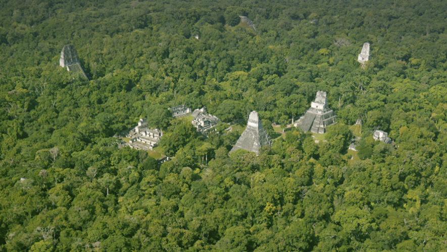 El Ayuntamiento decide no rehabilitar los chalés de Font Roja y los hará pasar por ruinas mayas