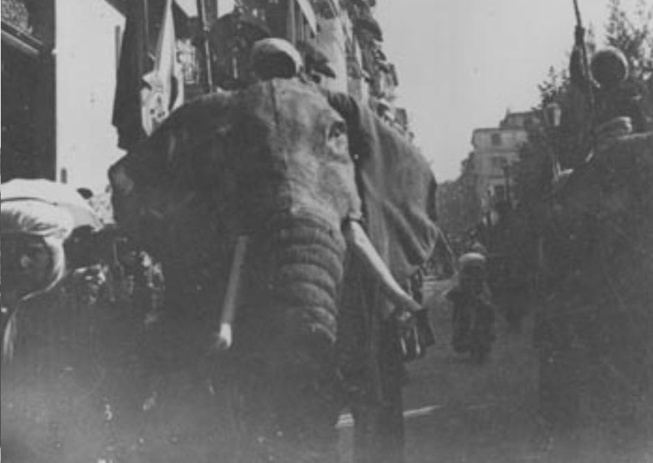 La alcoyanía en los tiempos del cólera (15): un enorme elefante festero en la habitación
