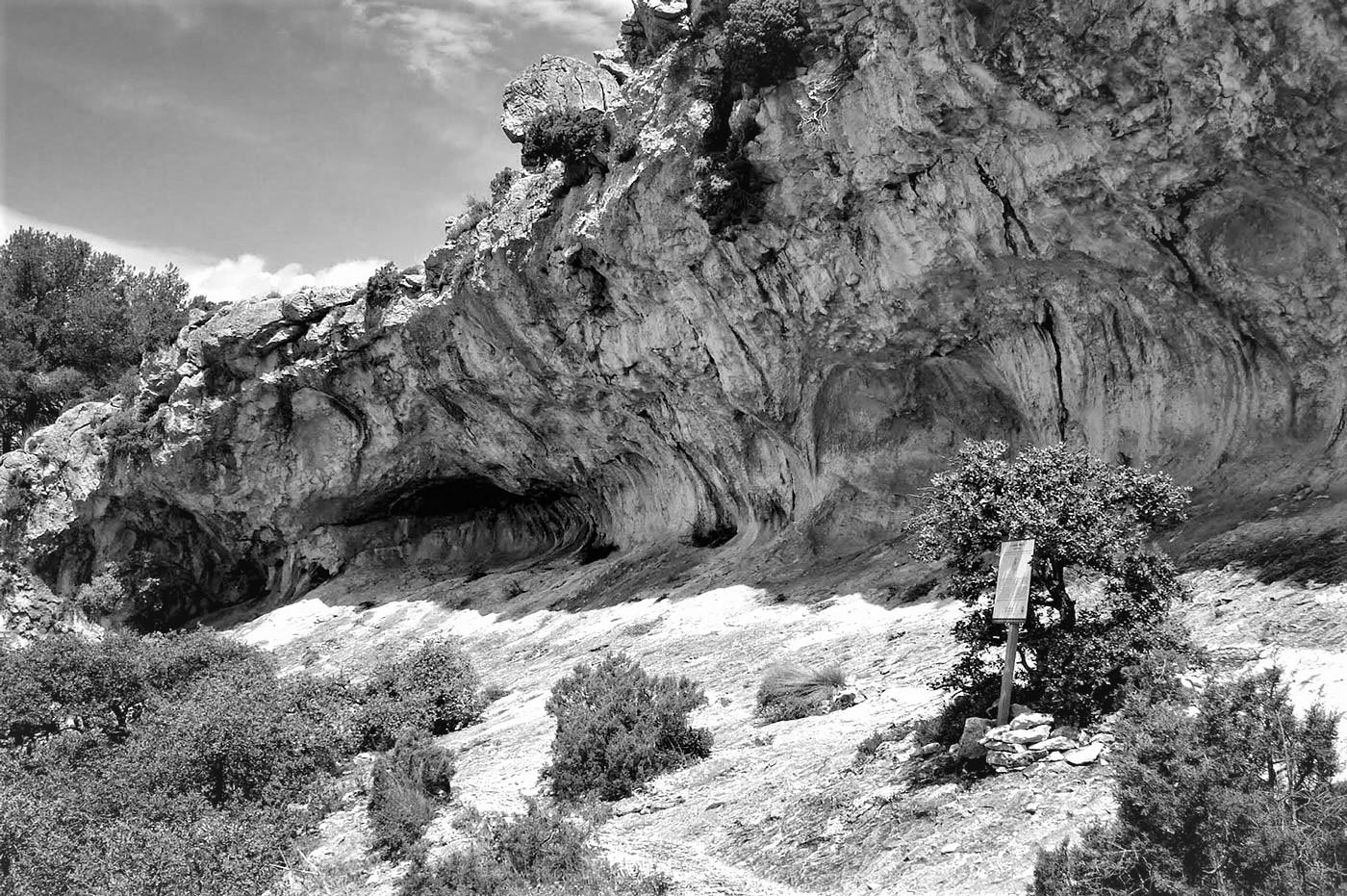 Les set coves